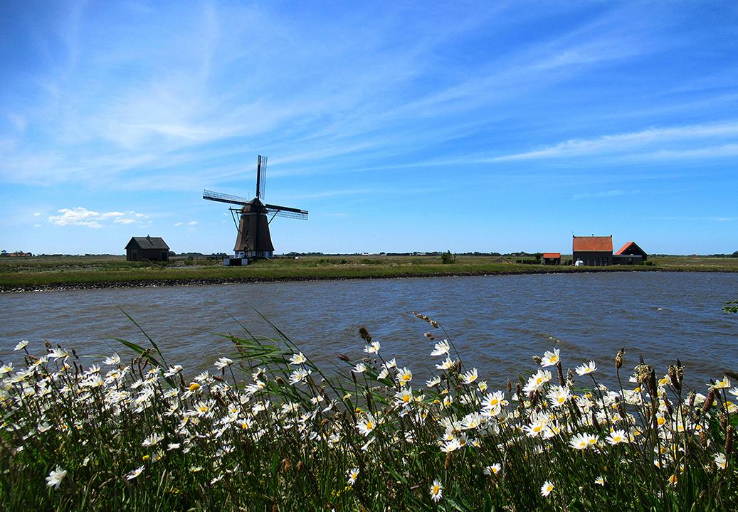 Molen Het Noorden bij Oosterend - Foto: ©Fransien Fraanje