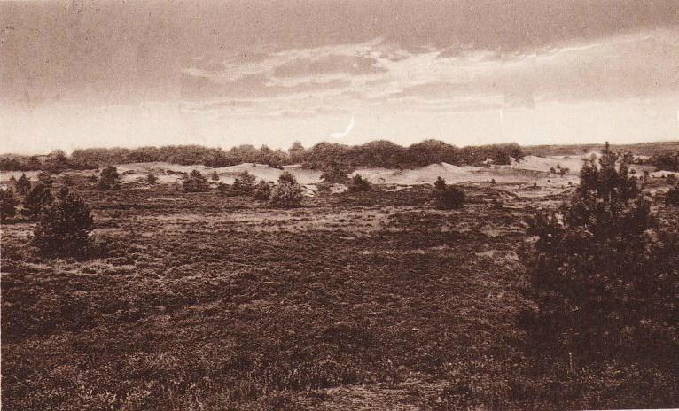 Het Wekeromse Zand zo rond 1930 - Foto: Archief Oud Wekerom