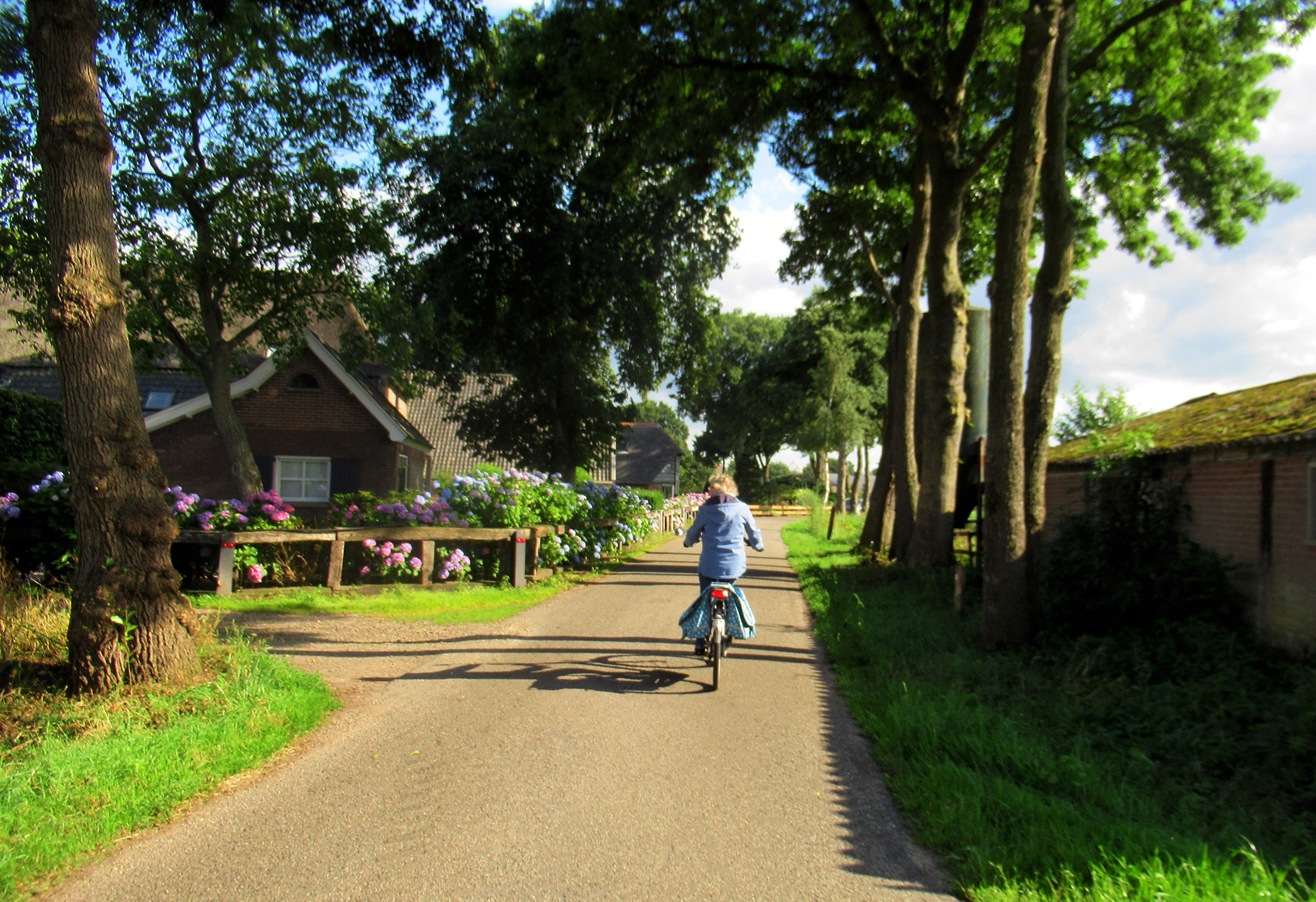 Het inmiddels overbekende plekje op Zwetselaar met prachtige bloemen om de boerderij - Foto: ©Louis Fraanje