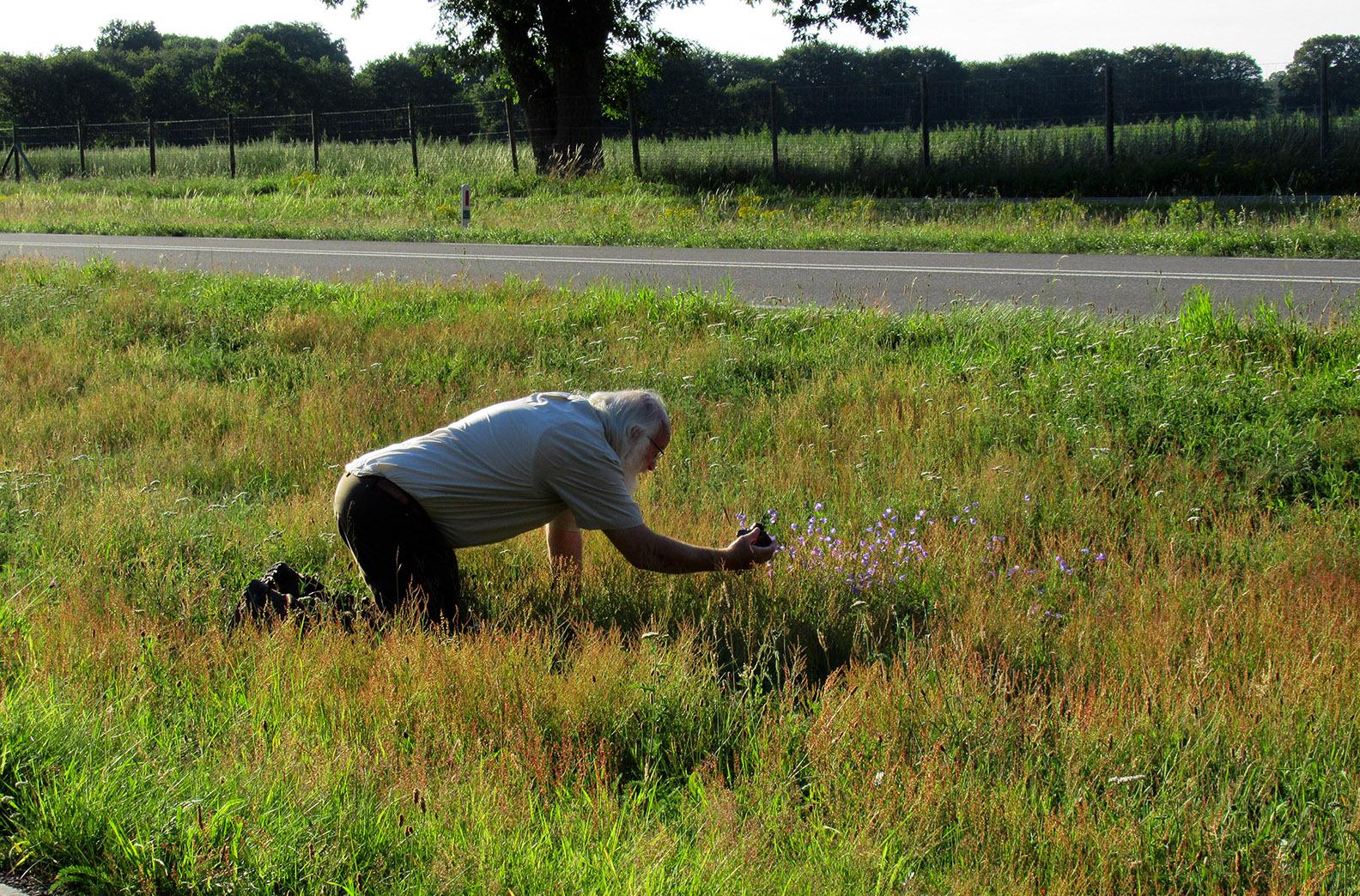 De Grasklokjes hebben mijn hart gestolen, ik ben er helemaal weg van, dus weer door de knietjes - Foto: ©Fransien Fraanje