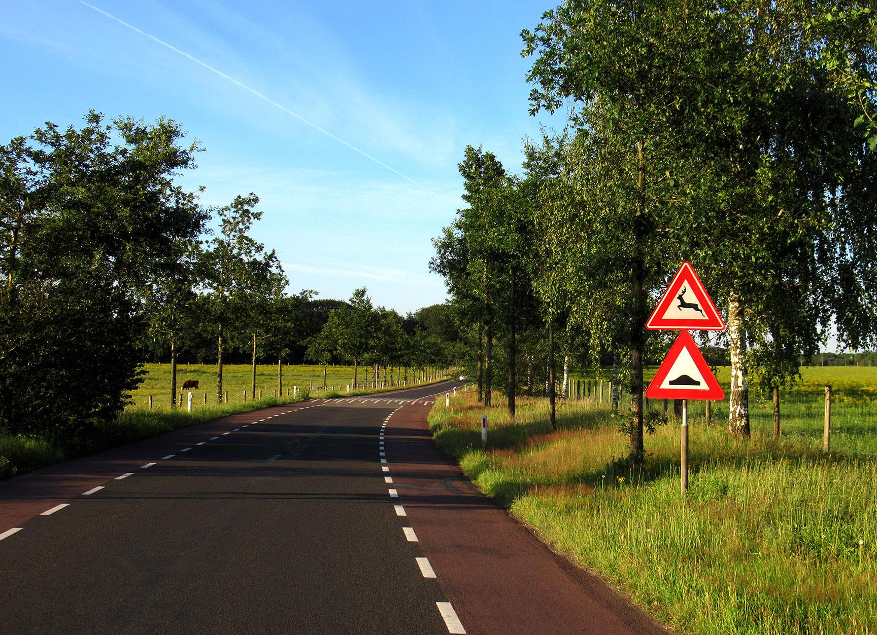 Via de Telefoonweg bij de Renkumse Heide, kijken we eventjes achterom, hier heb je vaak overstekend wild, dus uitkijken want deze borden staan er niet voor niets - Foto: ©Louis Fraanje