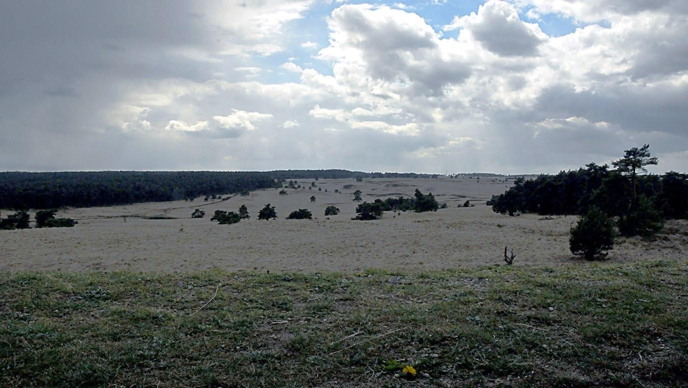 Schitterend panorama over de Wordt-Rhederheide- Foto: ©Ton Heekelaar