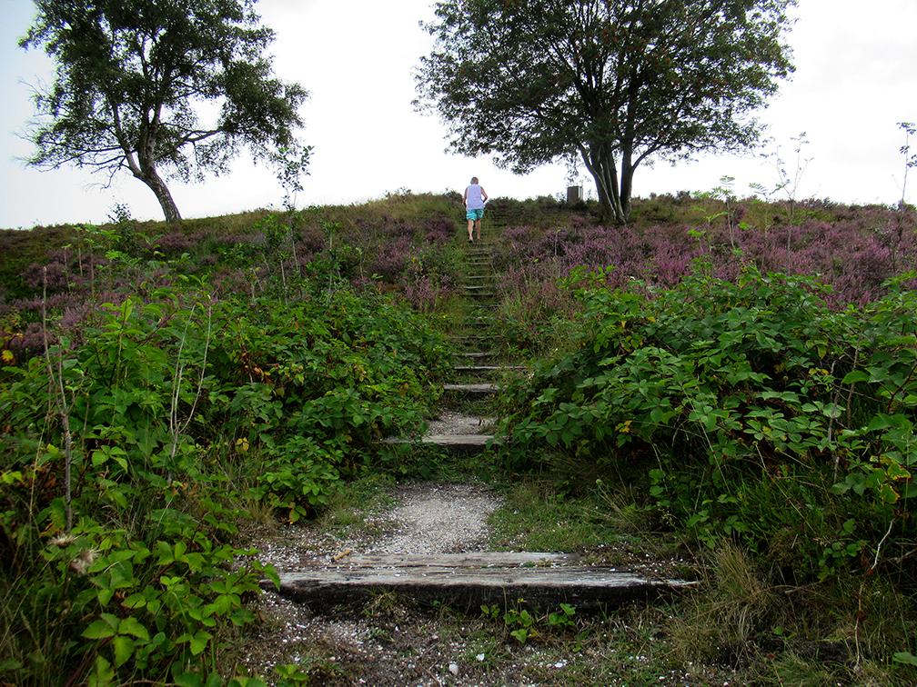 De bekende houten trap naar de heuvel met het uitzichtpunt - Foto: ©Louis Fraanje