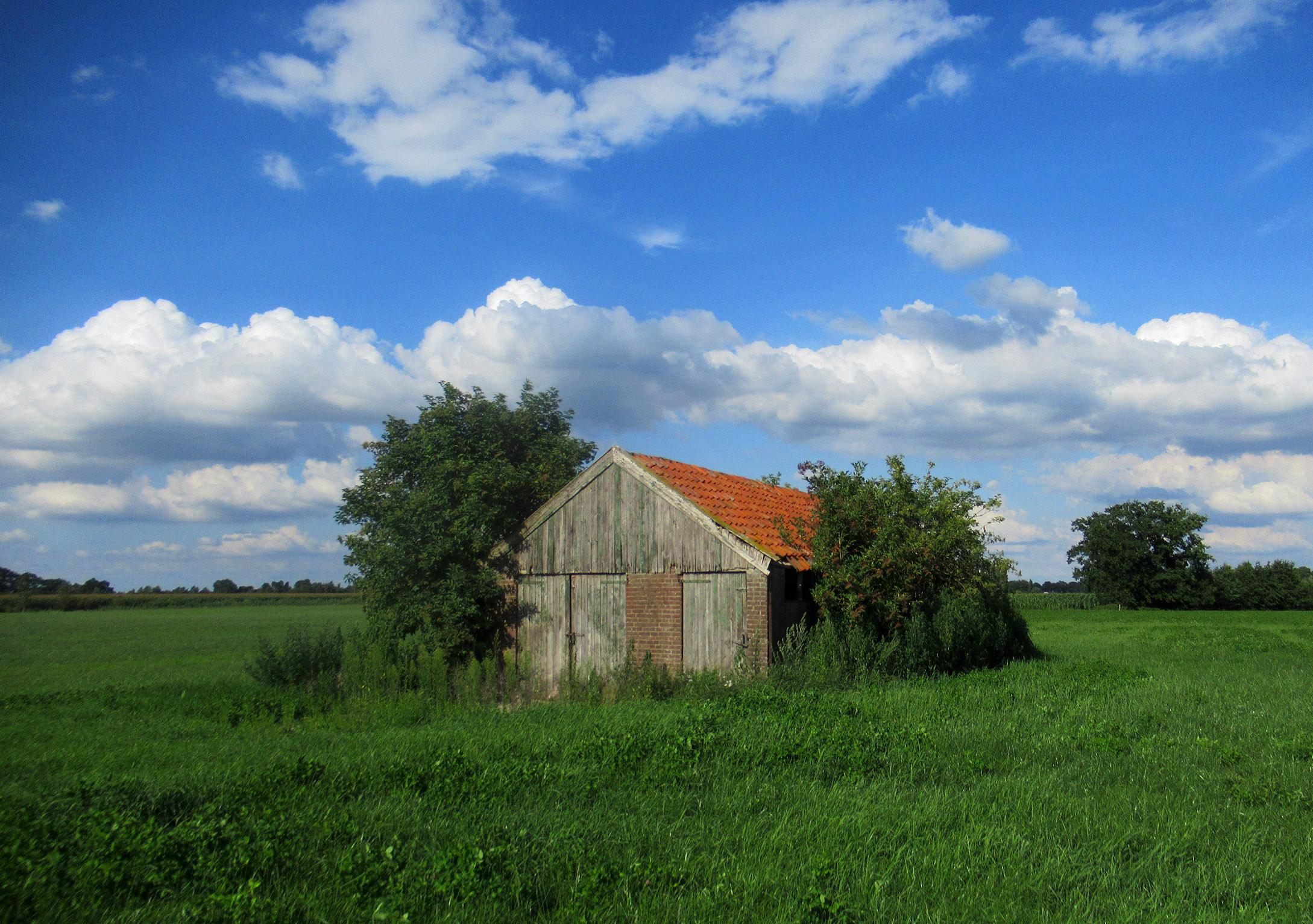 Een oud schuurtje in het open veld in de buurt van de Zwetselaarseweg - Foto: ©Louis Fraanje
