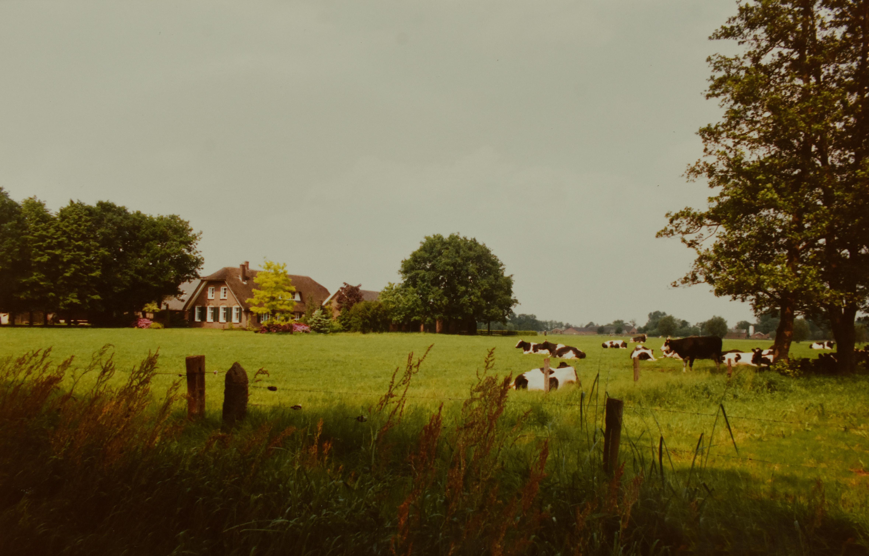 Natuur en cultuur is een samenspel in het boerenlandschap - Foto: ©Louis Fraanje
