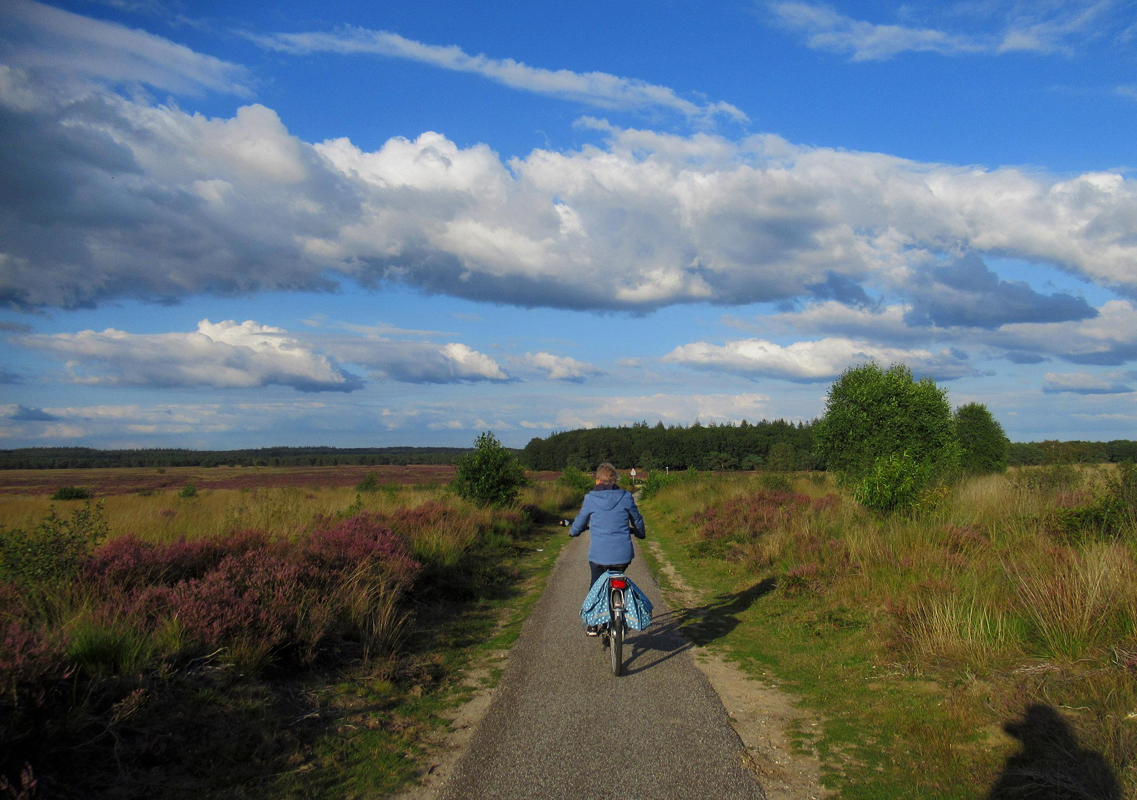 Vanaf de Langenberg in Ede fietsen we over de Edese Heide met Fransien voorop - Foto: ©Louis Fraanje