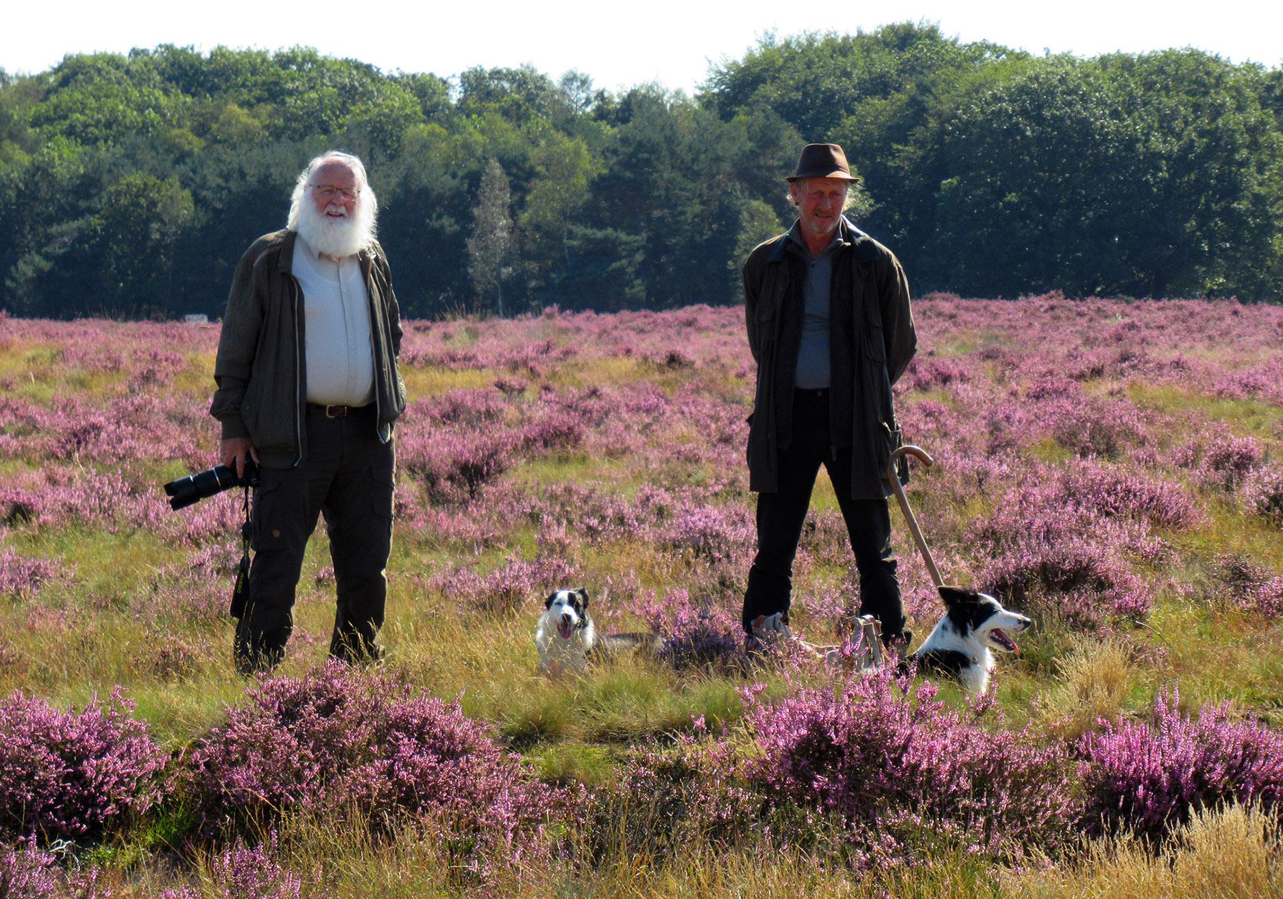 Twee oude bekenden in de paarse heide, de verhalenverteller en de schaapherder - Foto: ©Fransien Fraanje