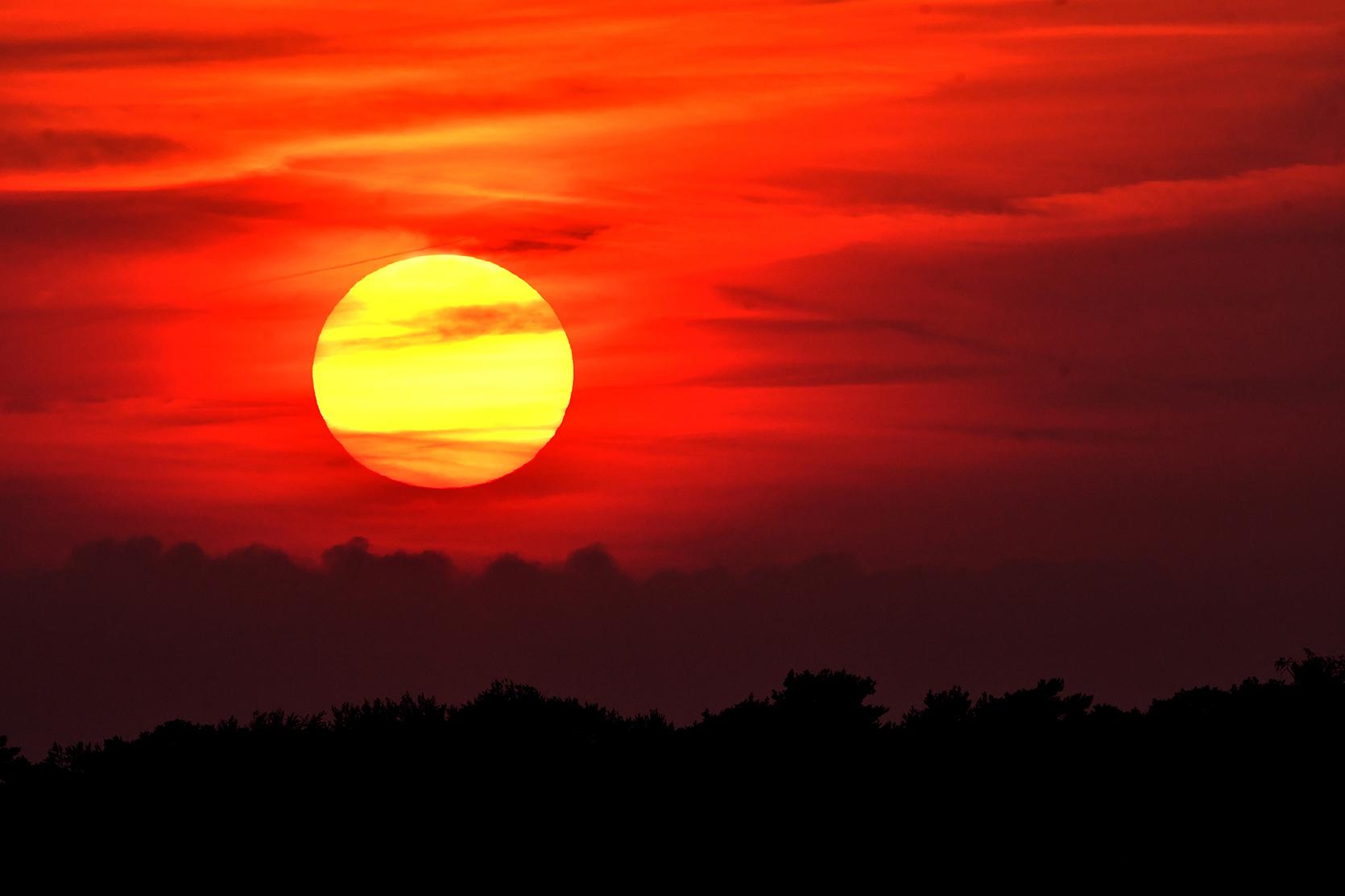 Een schitterende zonsondergang boven de bosrand en een vuurrode avondhemel als achtergronddecor – Foto: ©Louis Fraanje