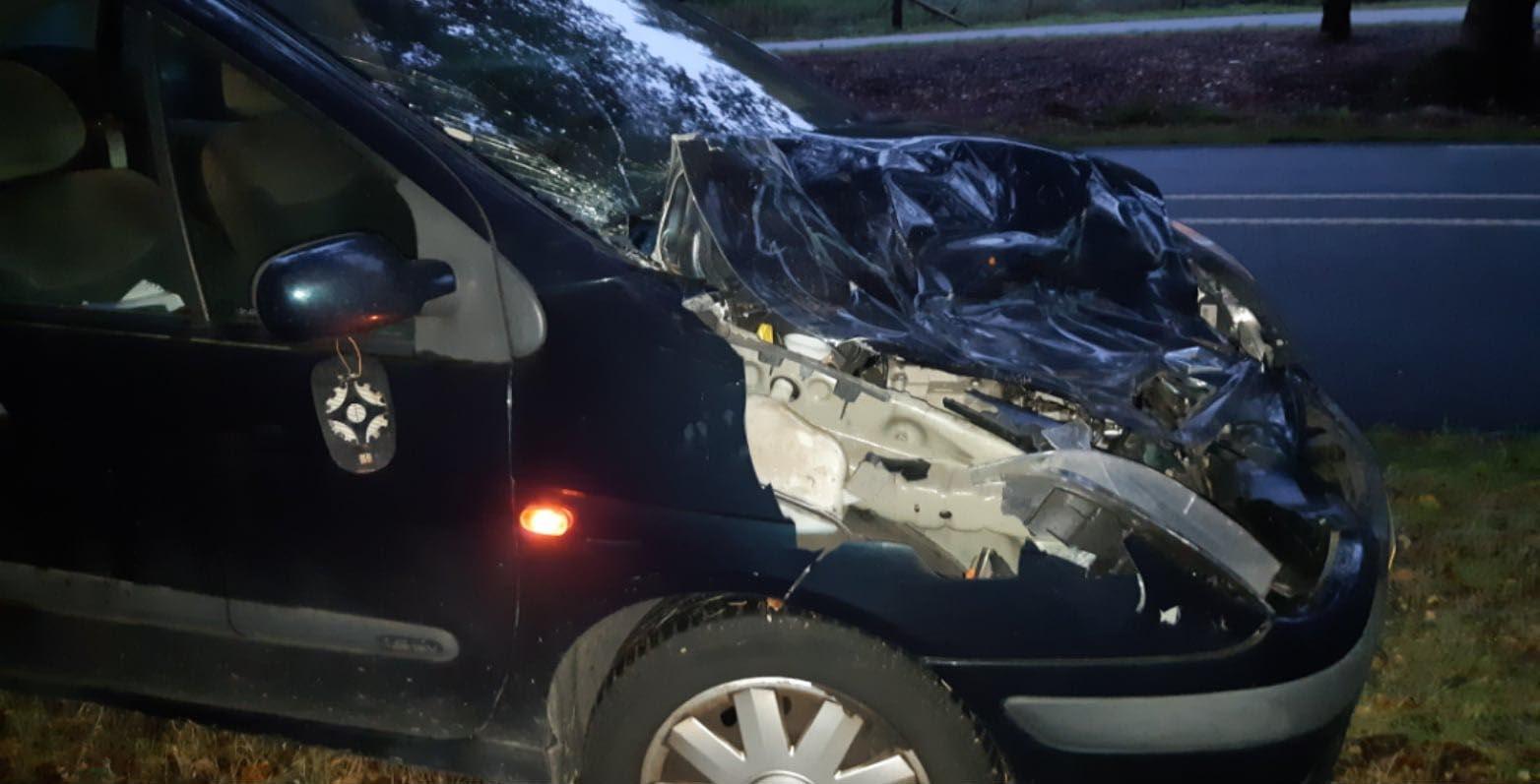 De totaal vernielde auto na de aanrijding met het edelhert - Foto: ©Politie Ede