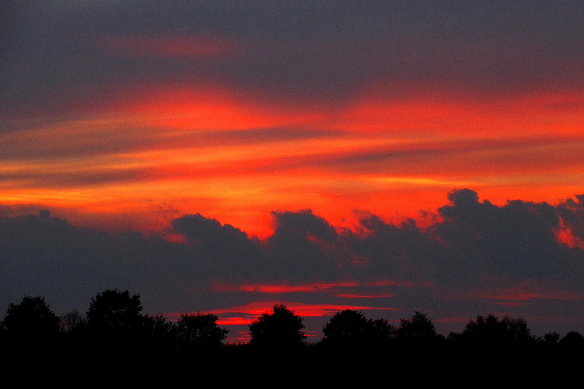 Een prachtig 'vlammend' avondrood boven het bos aan de horizon - Foto: ©Louis Fraanje