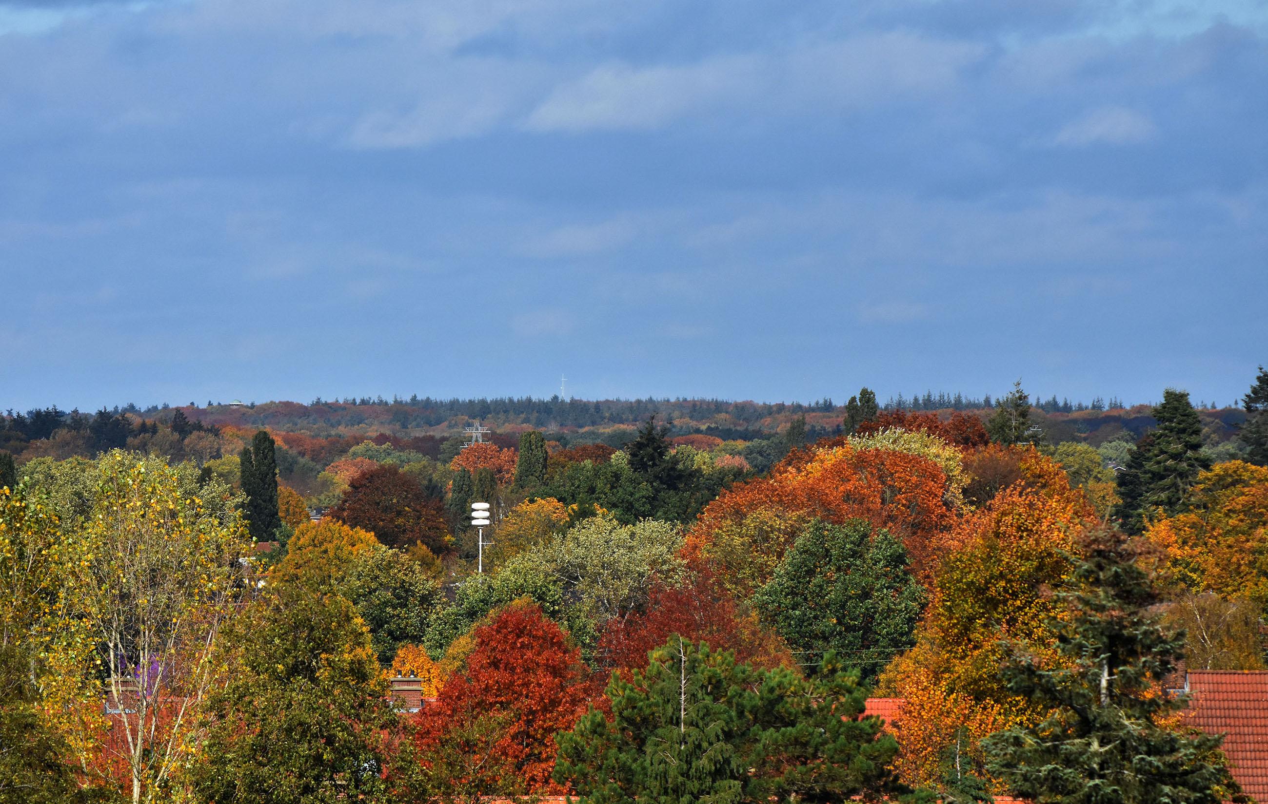 De herfst geeft een schitterend kleurenpalet boven de bossen van de Veluwe. En als we inzoomen richting Lunteren, is de hoed van uitkijktoren De Koepel duidelijk zichtbaar! - Foto: ©Louis Fraanje