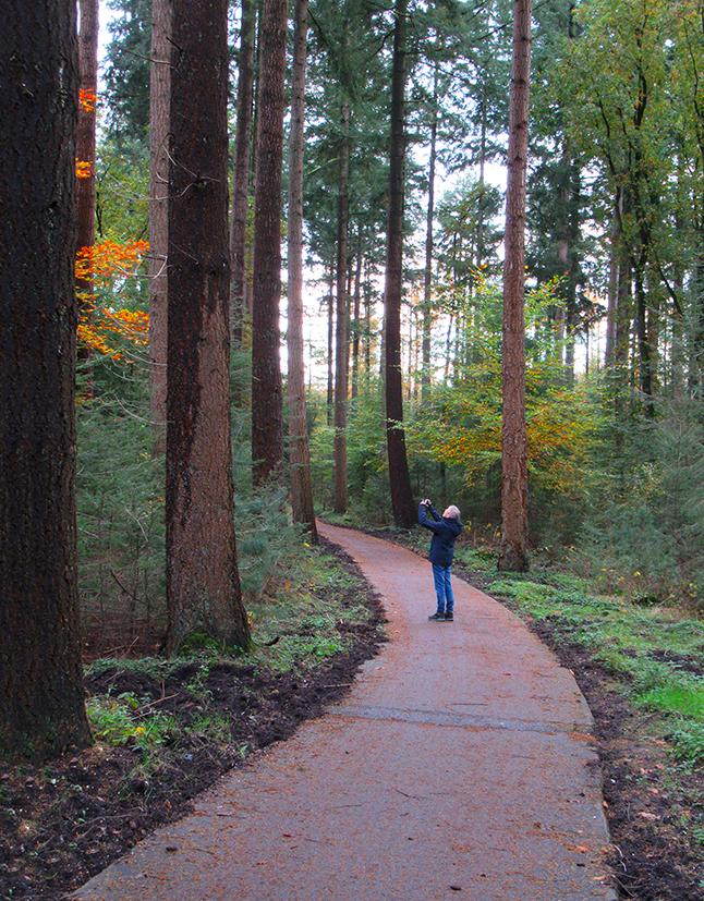 Wat kun je je klein voelen bij zulke enorme woudreuzen als deze Douglas-sparren - Foto: ©Louis Fraanje