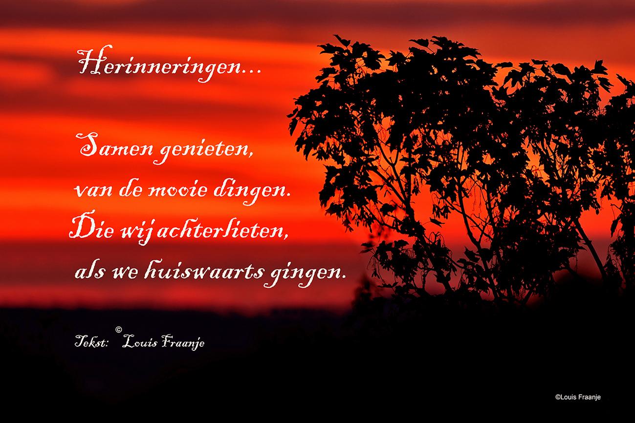 Een mooie herinnering is het zeker - Foto: ©Louis Fraanje
