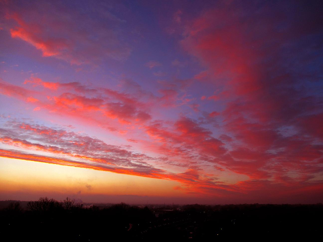 Op deze decembermorgen weer genoten van een vlammend morgenrood boven de Veluwe – Foto: ©Louis Fraanje
