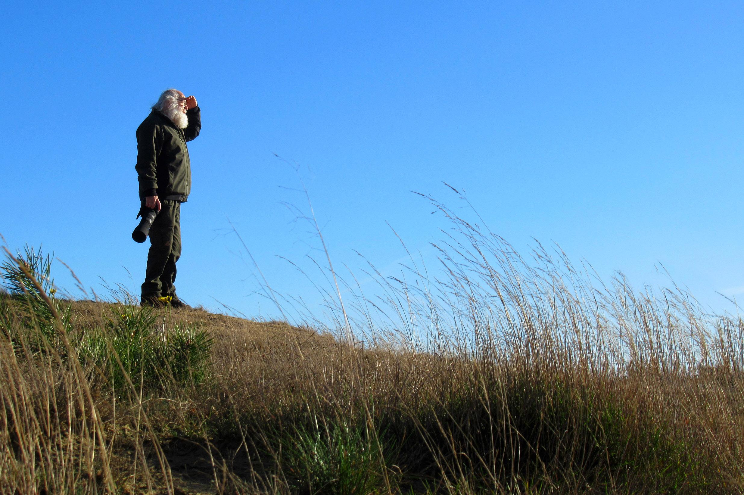 Louis op de uitkijk vanaf een heuvel in het Wekeromse Zand - Foto: ©Fransien Fraanje