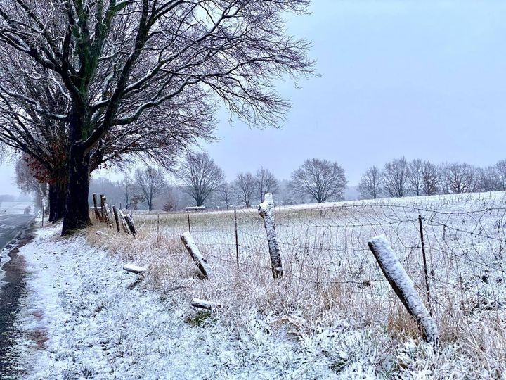 Een witte verrassing op Kerstavond in de Nordheide bij Salzhausen - Foto: ©Lüneburger Heide