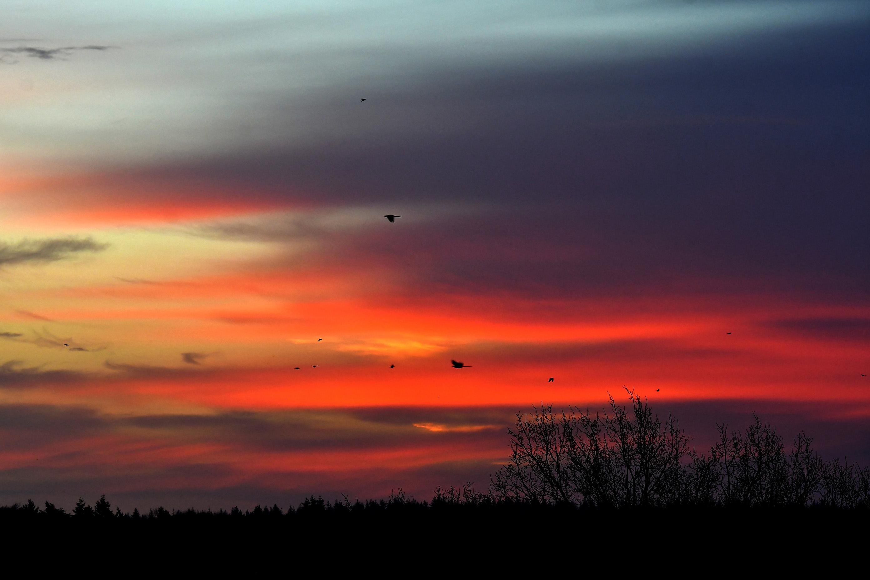 Een prachtig morgenrood boven de Veluwe - Foto: ©Louis Fraanje