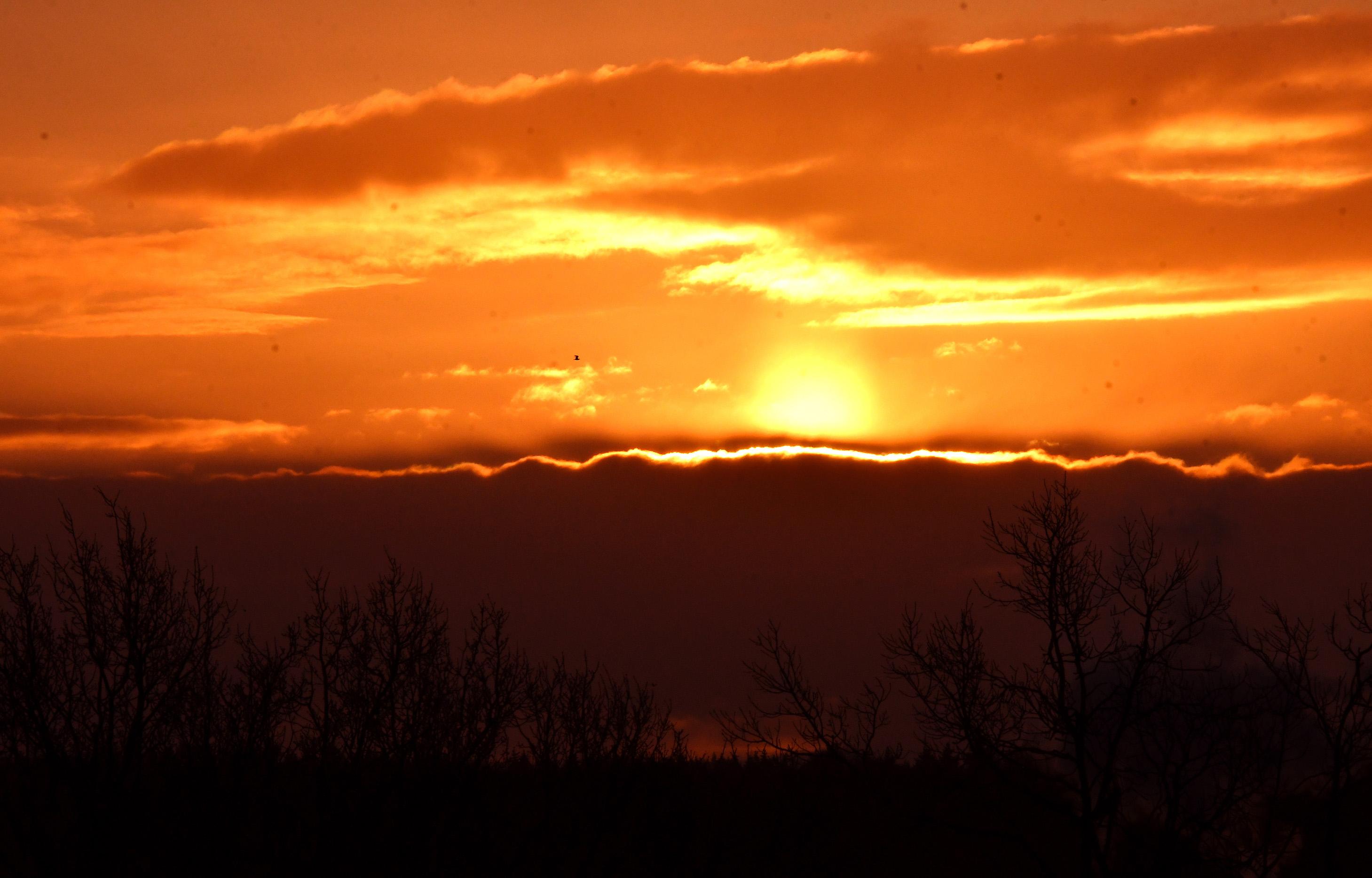 Om 09.00 uur kwam de zon in al haar glorie boven het wolkendek tevoorschijn - Foto: ©Louis Fraanje