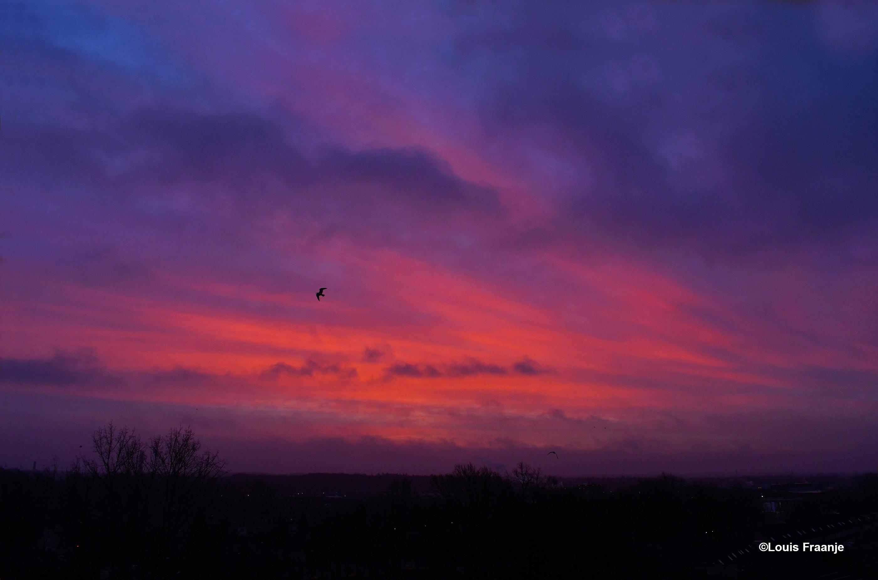 s' Morgens bij het ochtendgloren, kleurde de hemel prachtig rood - Foto: ©Louis Fraanje