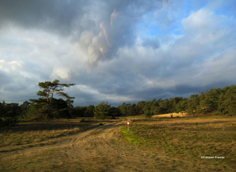 Rechts van de Wetweg een stukje van het Otterlose Zand - Foto: ©Fransien Fraanje