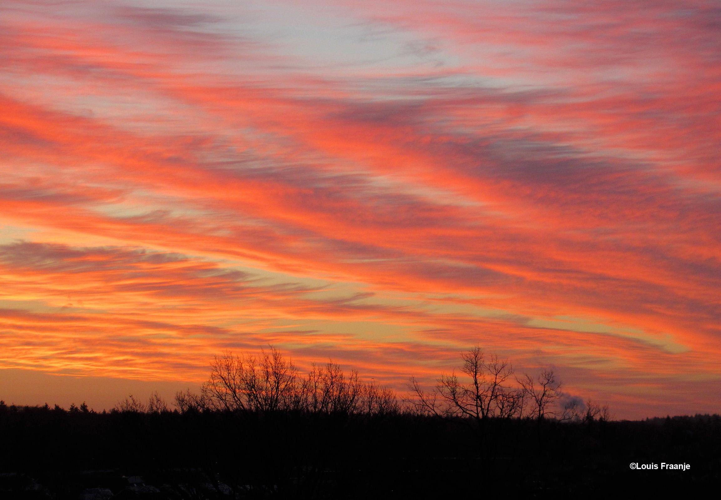 Vanmorgen kleurde de hemel 'vlammend' rood boven de Veluwse bossen - Foto: ©Louis Fraanje