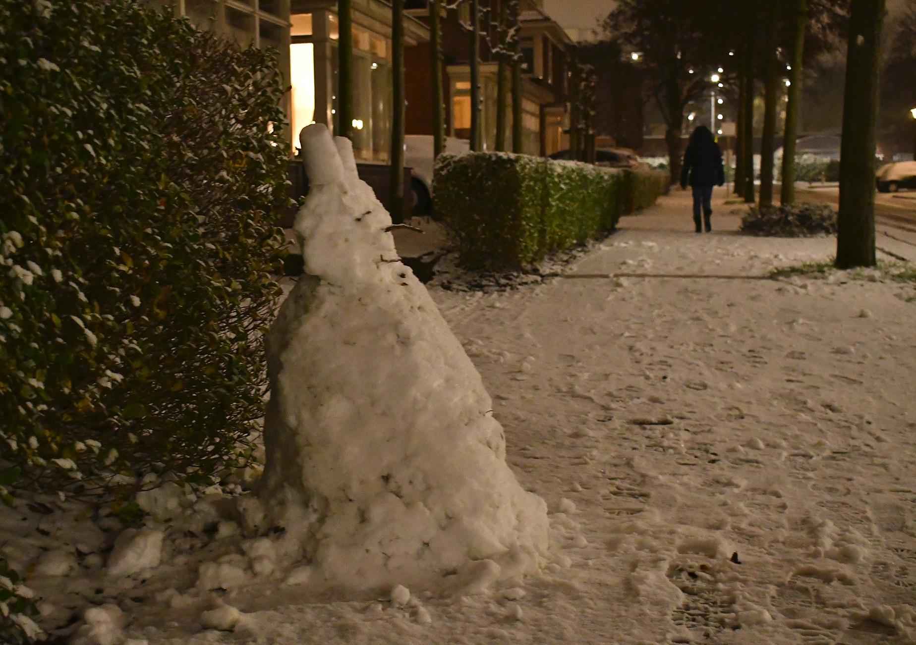 Ja hoor... daar staat dan een echte sneeuwpop - Foto: ©Louis Fraanje