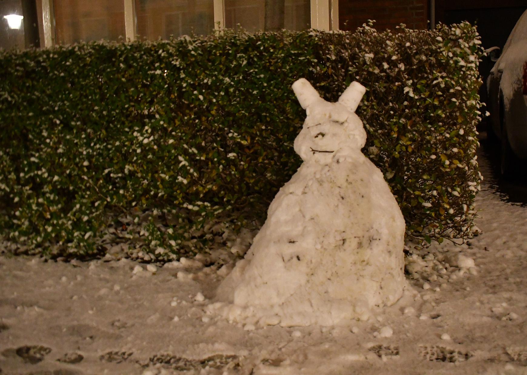 En wat voor een sneeuwpop... echt leuk hoor! - Foto: ©Louis Fraanje
