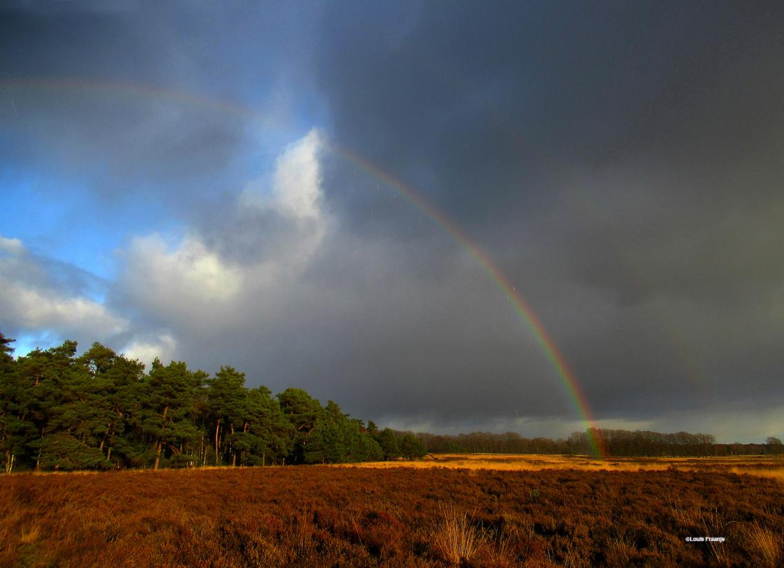 Boven het Reemsterveld vertoonde de schitterende regenboog zich in al haar glorie! - Foto: ©Louis Fraanje