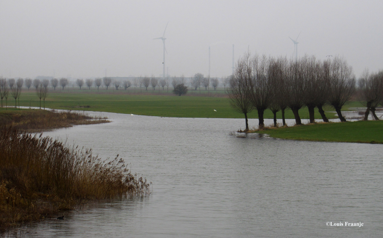 Aan de overkant van de dijk bij de boerderij ook allemaal water - Foto: ©Louis Fraanje