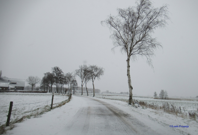 """Blij en tevreden met een 'weitas' vol foto's over de Meentweg """"op huus an' - Foto: ©Louis Fraanje"""