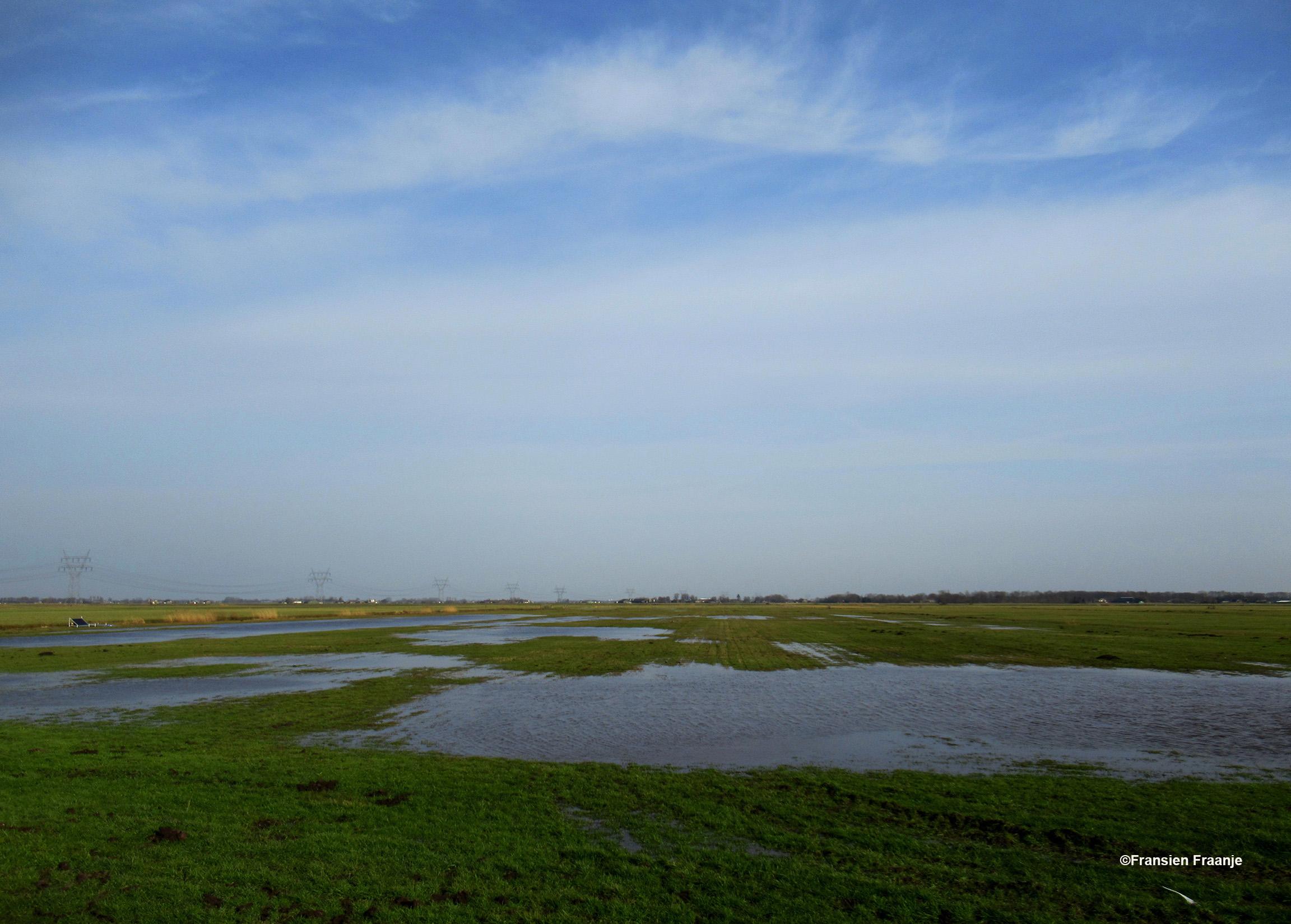 Zoals hier nog iets zichtbaar is van het water in dit natte gebied - Foto: ©Fransien Fraanje