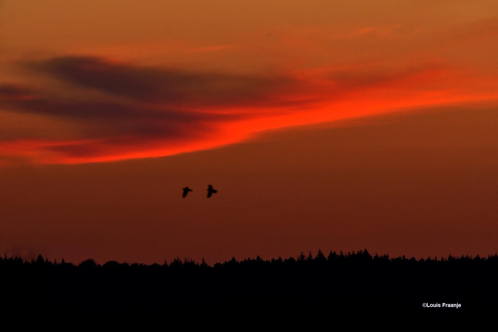 Na zonsondergang ontwikkelde zich een soort oranje/rode waaier aan de hemel - Foto: ©Louis Fraanje