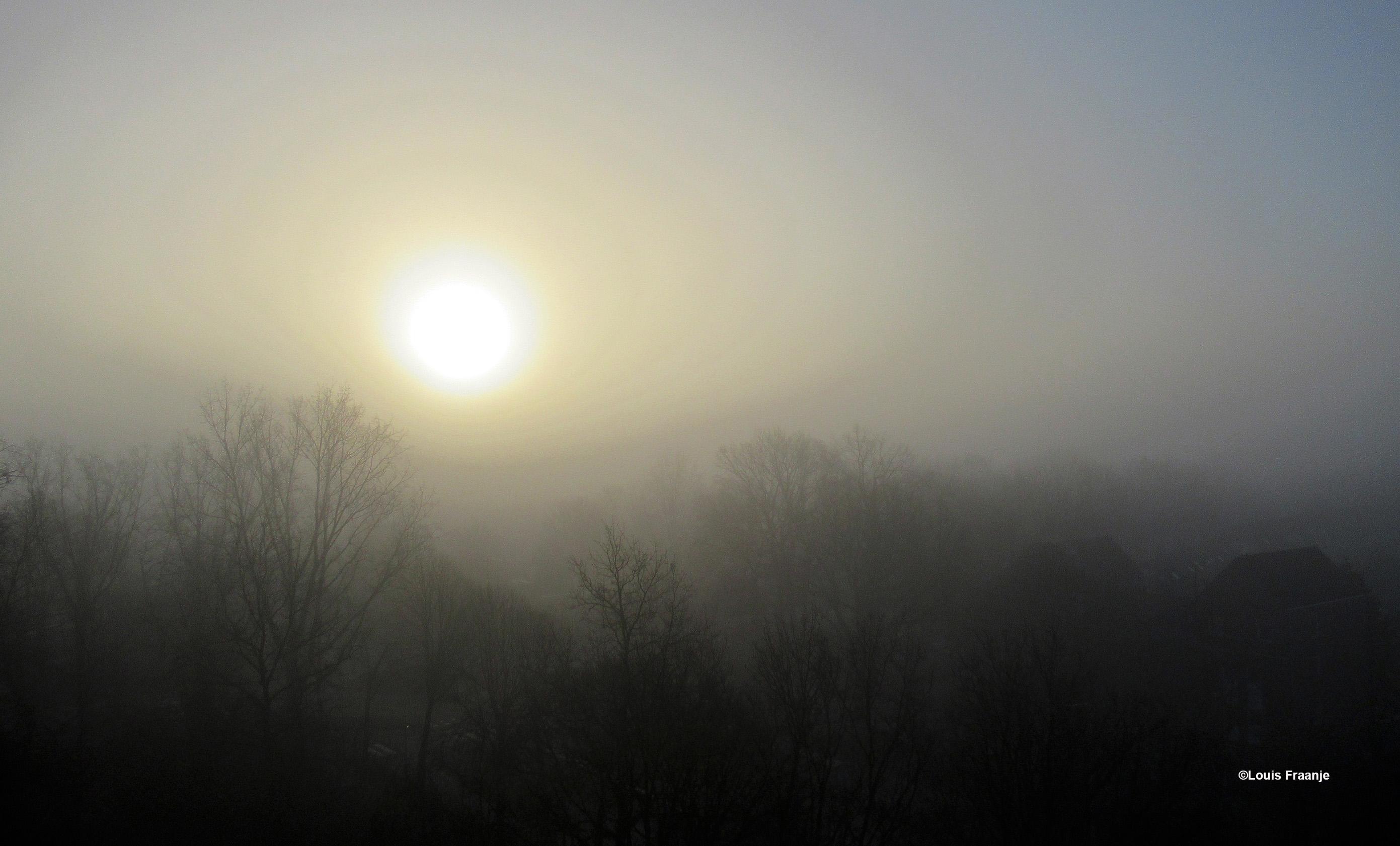 De zon probeert door de dichte mist heen te dringen, die in en boven de Veluwse bossen hangt - Foto: ©Louis Fraanje