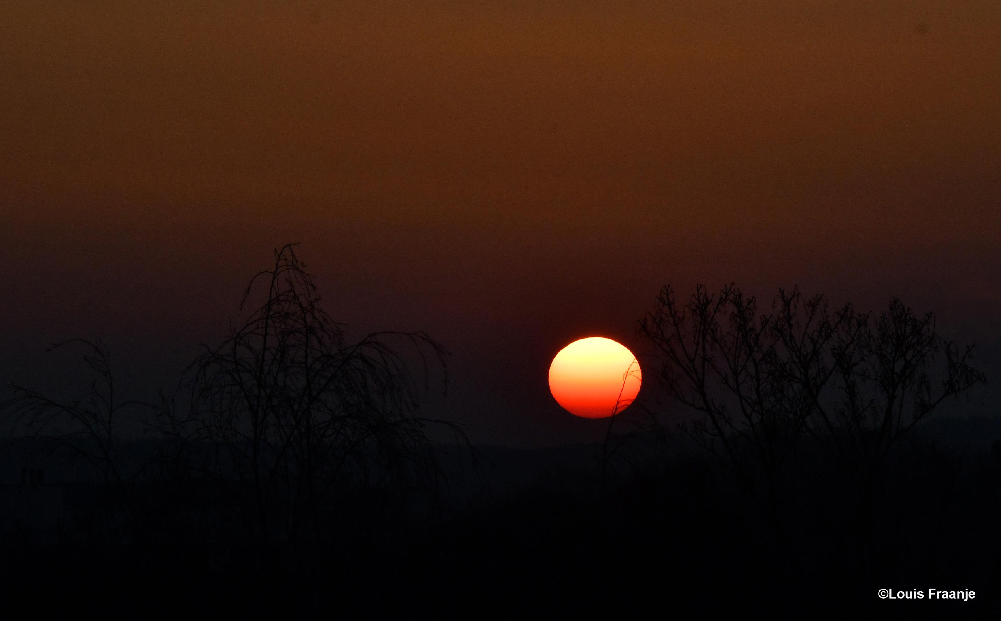 Een prachtige zonsondergang boven de bossen - Foto: ©Louis Fraanje