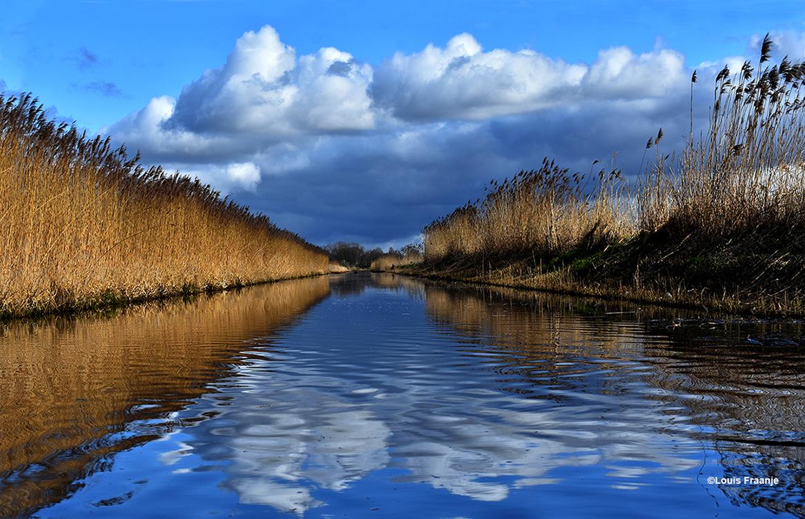 Wolken, water en wind weerspiegelen in de sloot, omsloten door een prachtige rietkraag - Foto: ©Louis Fraanje