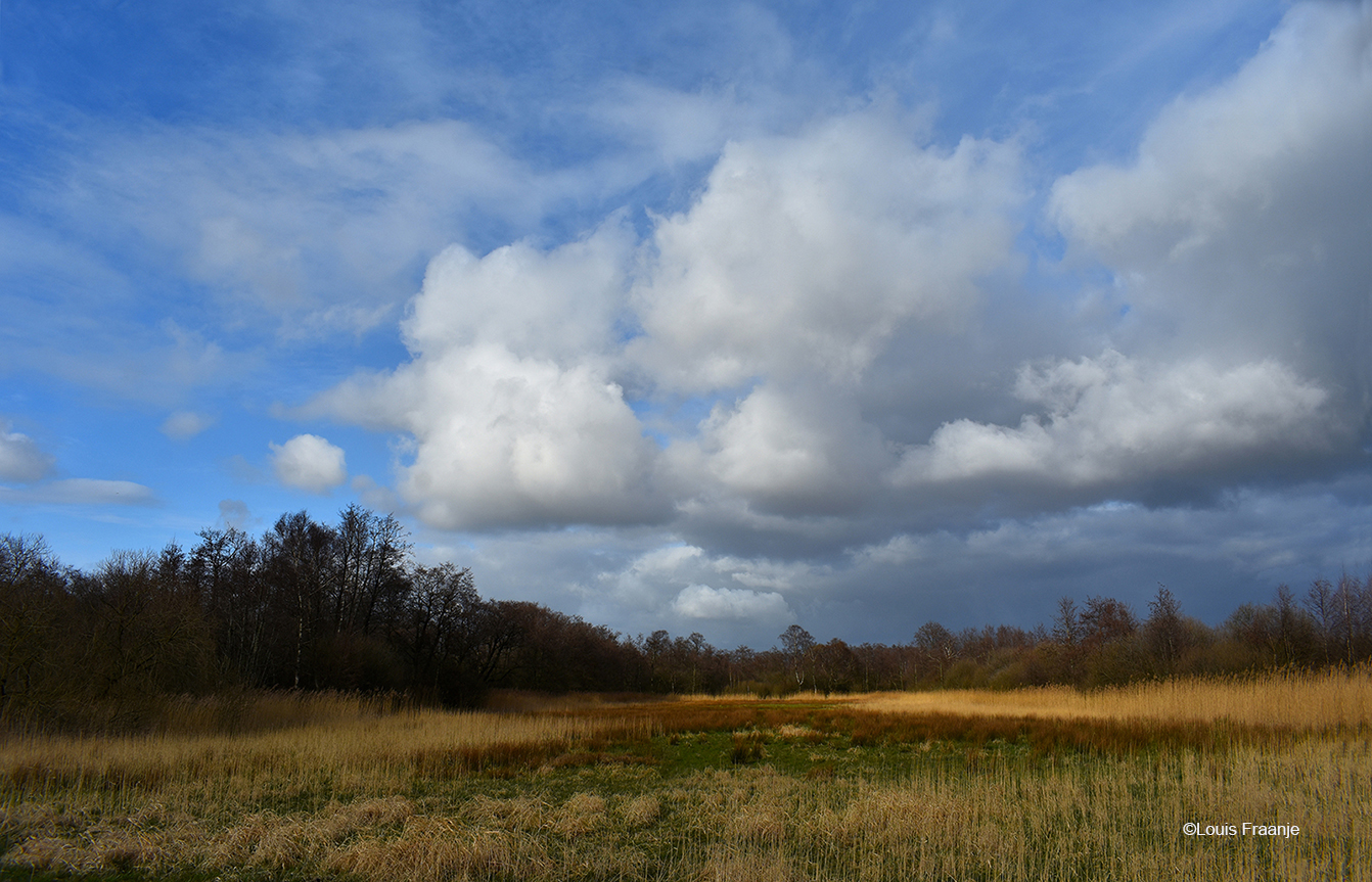 Prachtige wolkenluchten boven het Rauwe Veld - Foto: ©Louis Fraanje