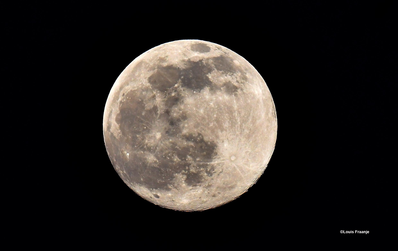 De Volle maan aan de nachtelijke hemel - Foto: ©Louis Fraanje