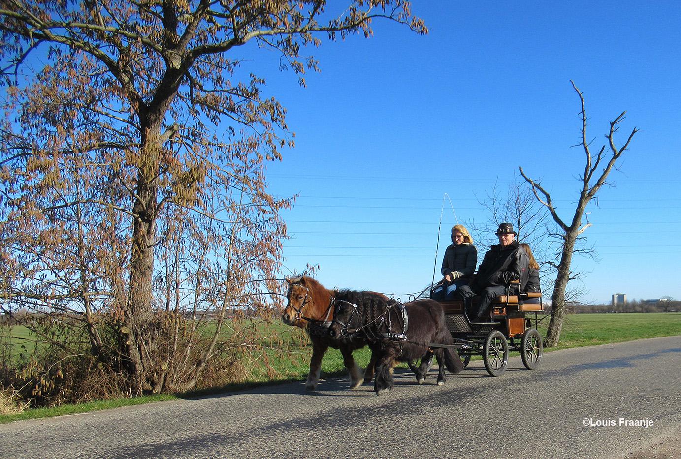 Twee pony's voor de wagen en heerlijk genieten van de Lentezon - Foto: ©Louis Fraanje