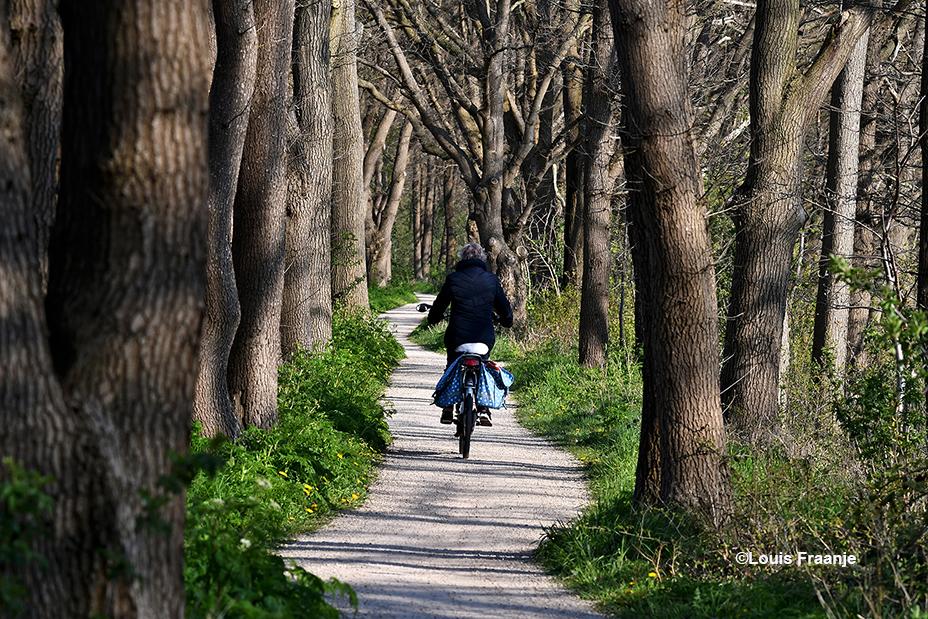 Daar fietst Fransien over het prachtige kronkelige fietspad bij De Schalm - Foto: ©Louis Fraanje