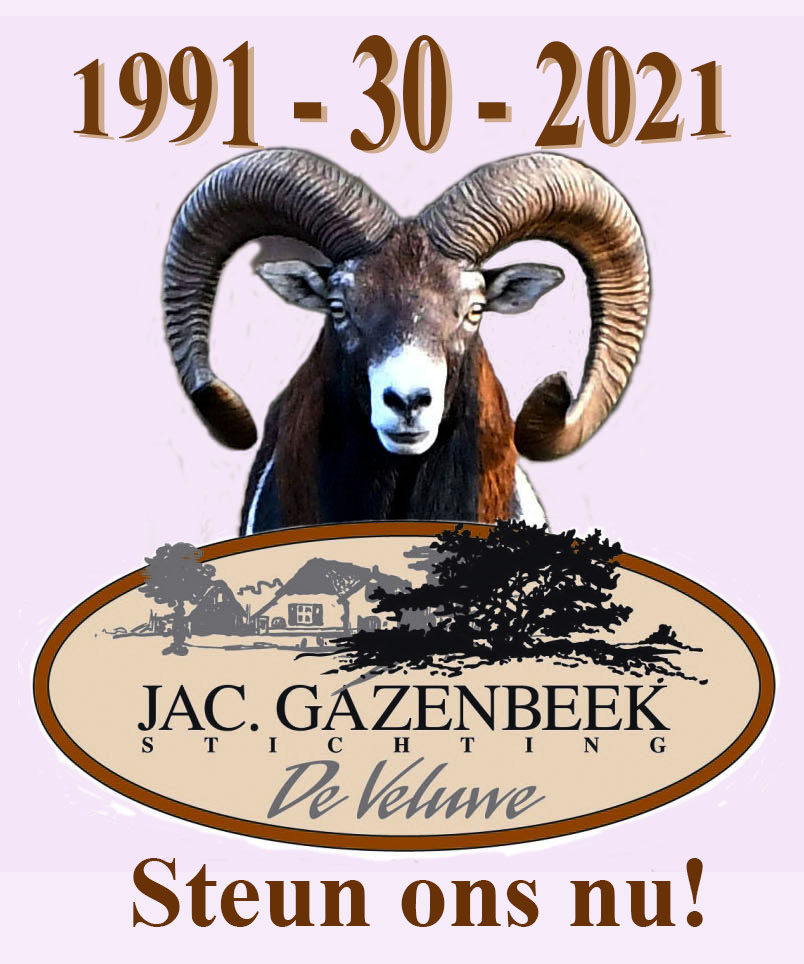 1991 - 2021 Moeflon