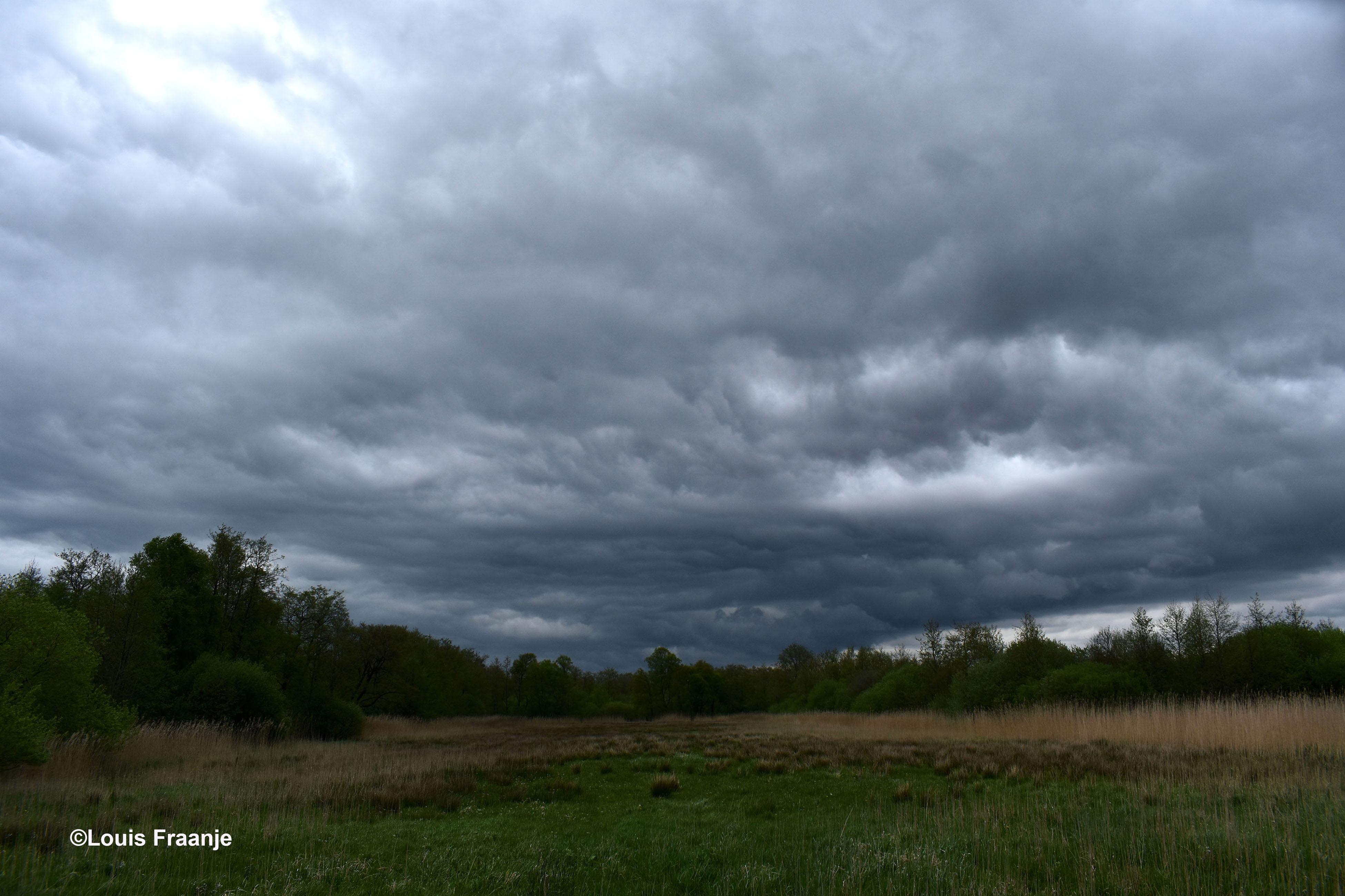 Een donkere en dreigende wolkenlucht 's middags in het Rauwe Veld - Foto: ©Louis Fraanje