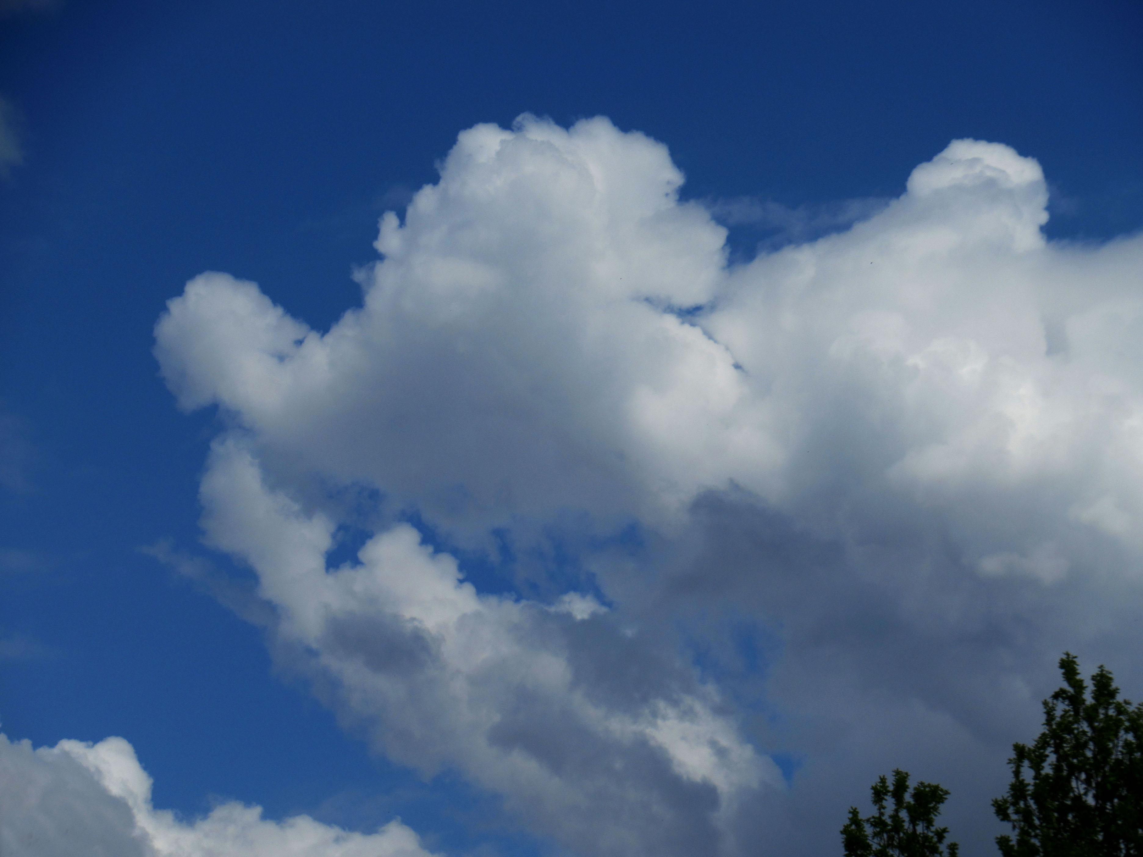 Met een beetje fantasie zie je in deze wolk het hoofd van Mickey Mouse - Foto: ©Fransien Fraanje
