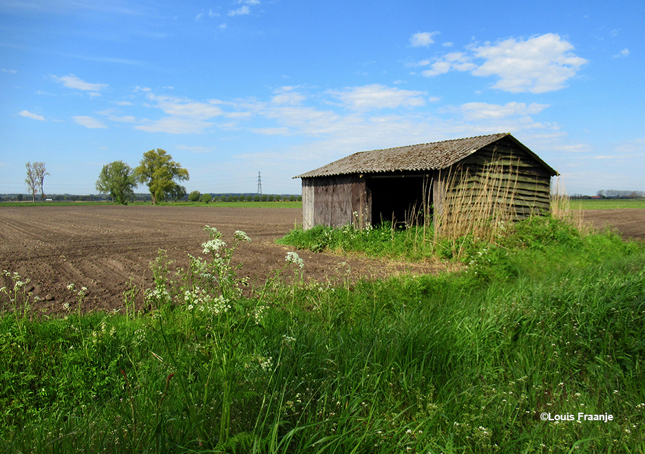 Aan de Slagsteeg zomaar een oud schuurtje als stilleven in het landschap - Foto: ©Louis Fraanje