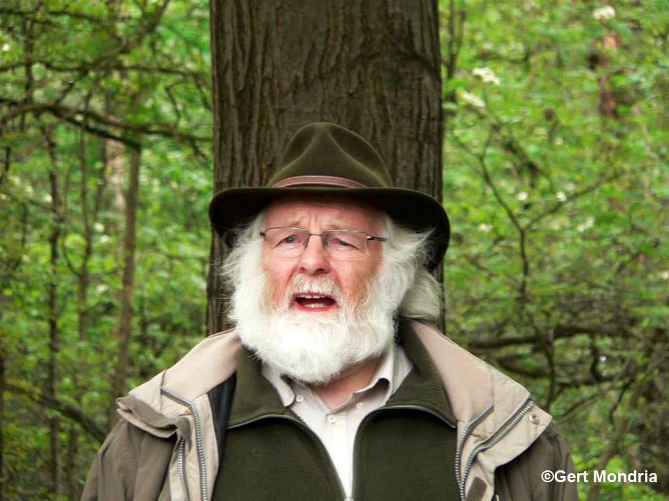 Vertellen tijdens een boswandeling op de Goudsberg bij Lunteren - Foto: ©Gert Mondria