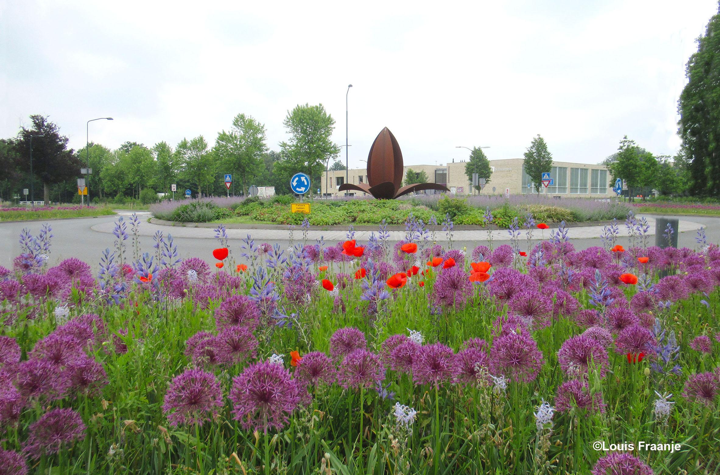 Bloemenweelde op de rotonde met op achtergrond Cultuurhuus De Breehoek en in het midden de prachtige stale Lelie uit het wapen van Scherpenzeel - Foto: ©Louis Fraanje