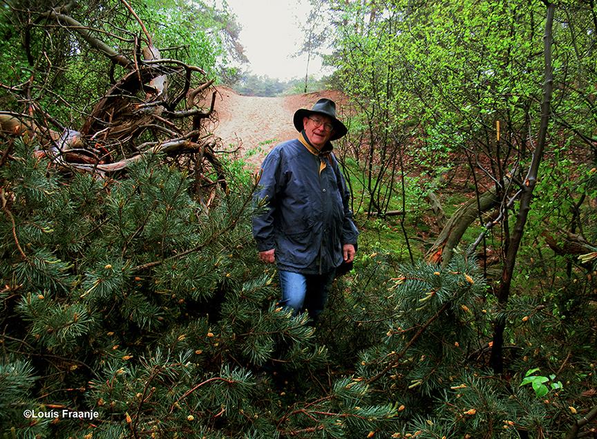 Ja... Henk, daar ligt dan ineens een omgevallen boom midden op het bospad, dat kan zomaar gebeuren op een boswandeling! - Foto: ©Louis Fraanje