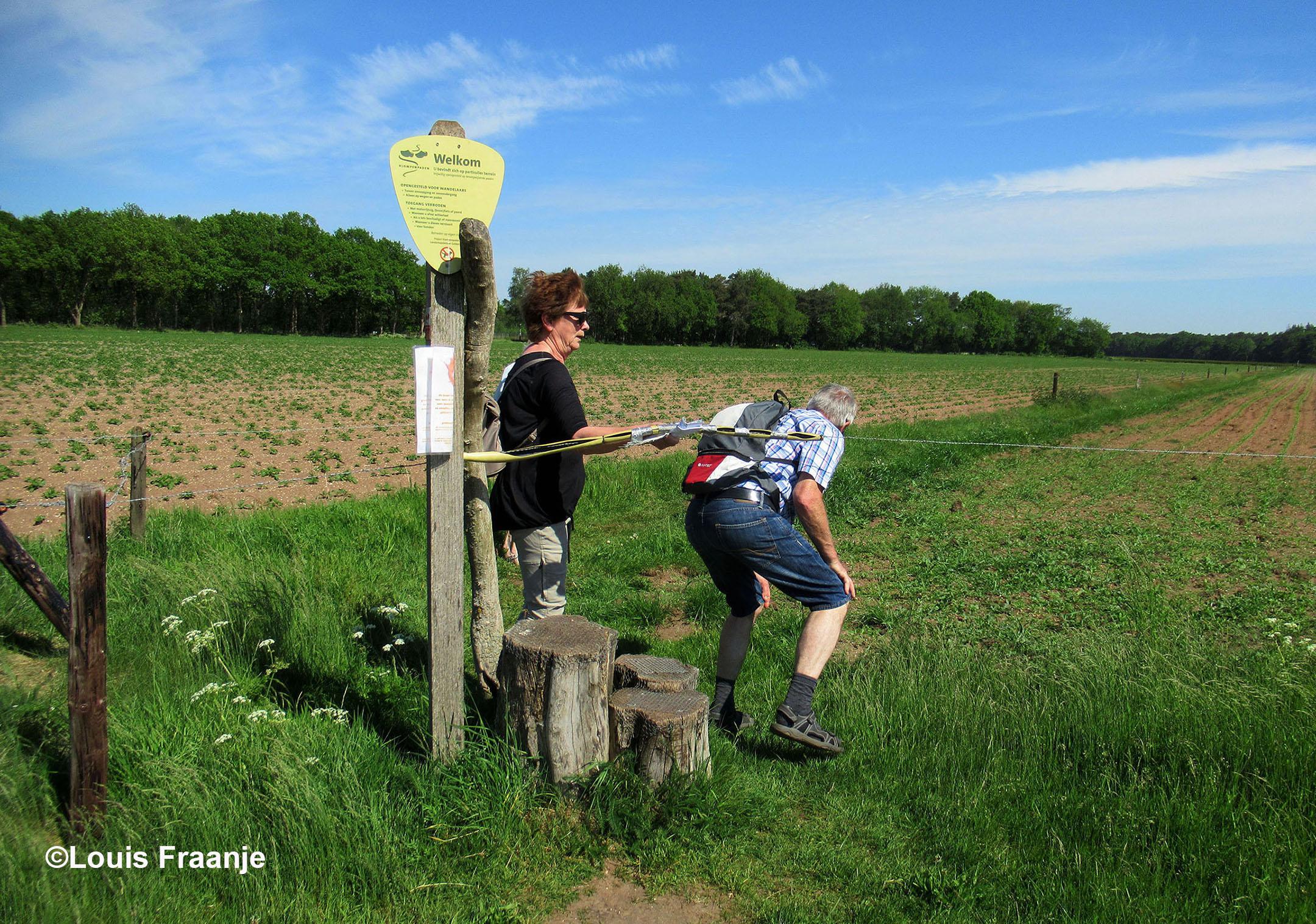 Je kunt over draad stappen, maar met hulp van het vrouwtje er ook onderdoor - Foto: ©Louis Fraanje