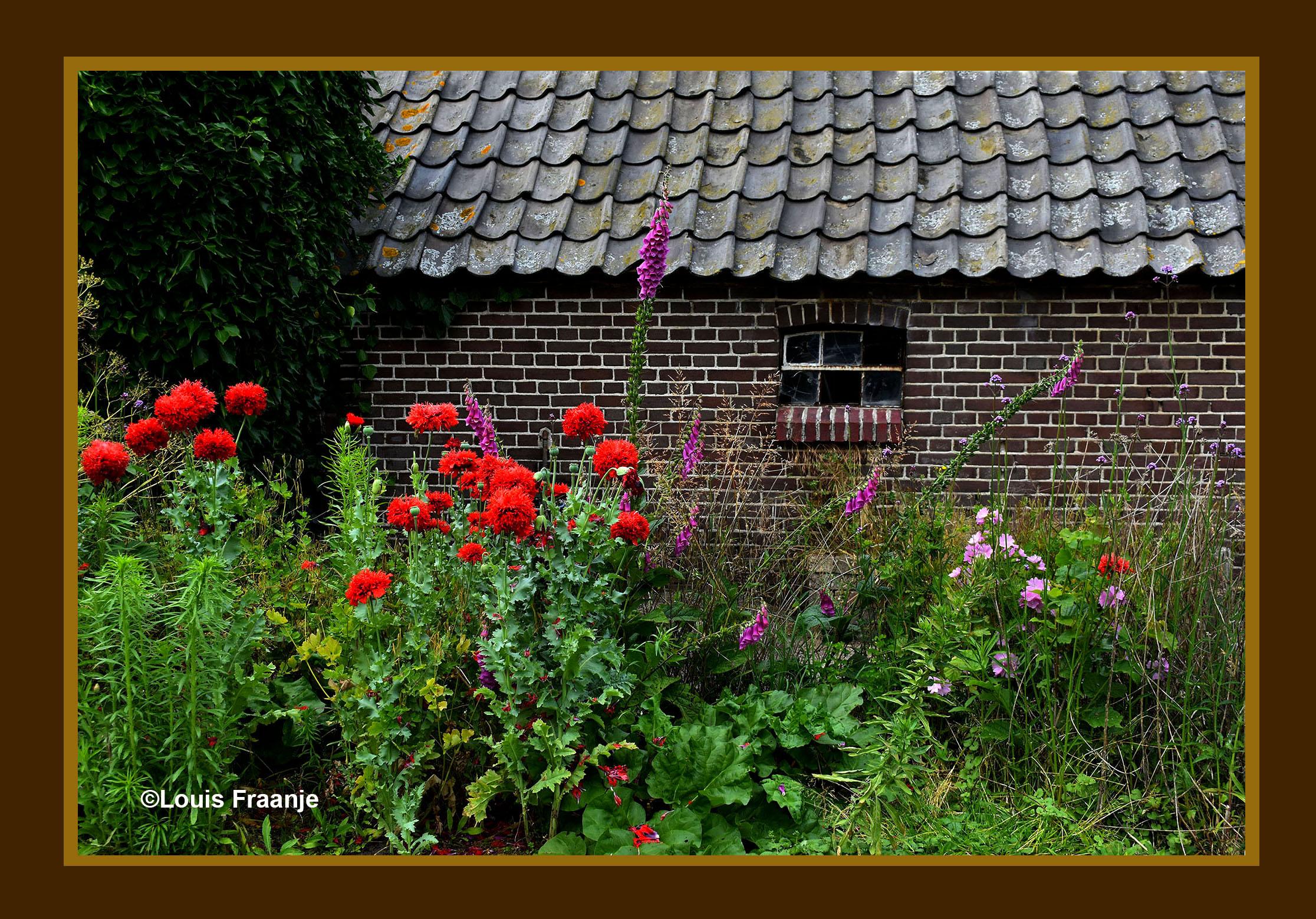Kleurrijk stilleven ergens in een hoekje op het Veluwse platteland - Foto: ©Louis Fraanje