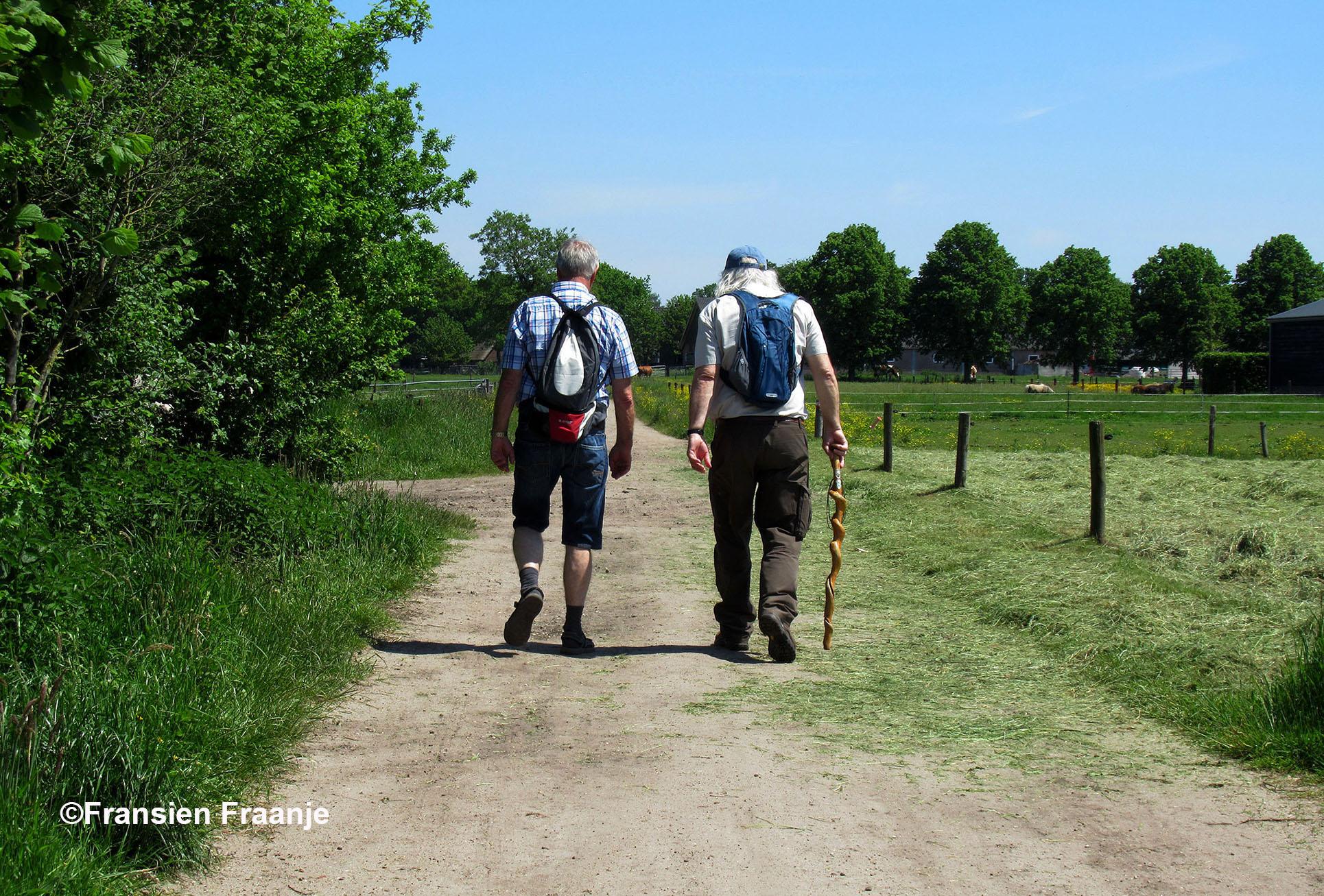 Gert en Louis wandelen gebroederlijk samen over de Veluwe - Foto: ©Fransien Fraanje