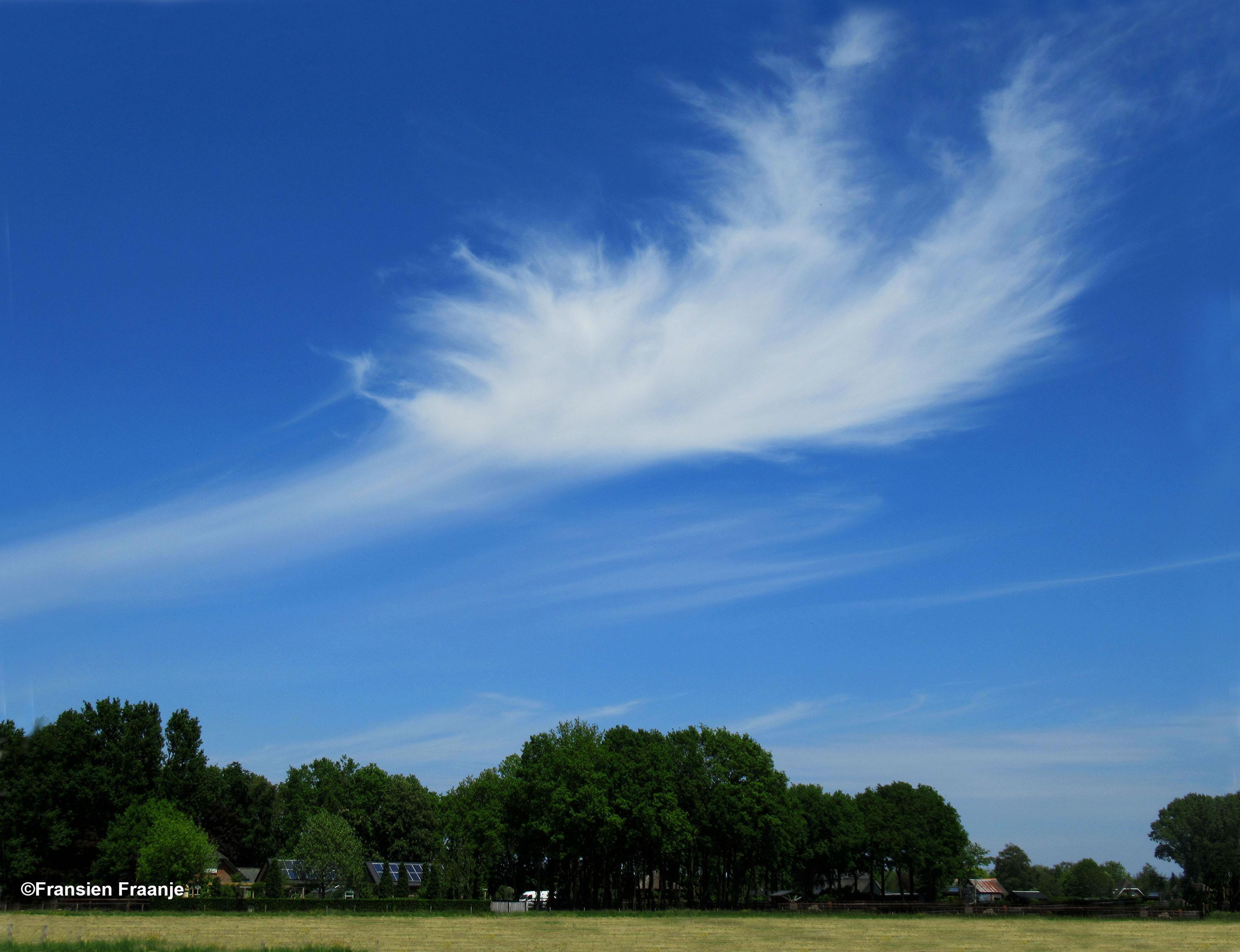 Richting Uddel zien we weer zo'n prachtige windveer aan de hemel - Foto: ©Fransien Fraanje